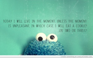 live_the_moment_cookie_monster-151552
